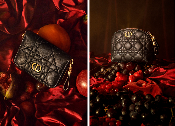 Dior launches the perfect line of small leather accessories (фото 1)